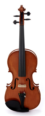 Roth & Junius RJVE 4/4 Master Violin Set