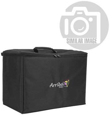 American DJ Accu-Case ATP-19 Padded Bag